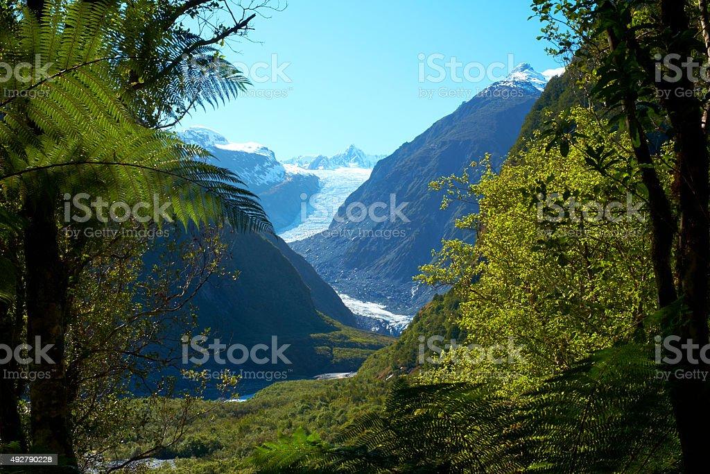 Fox Glacier Through The Trees stock photo