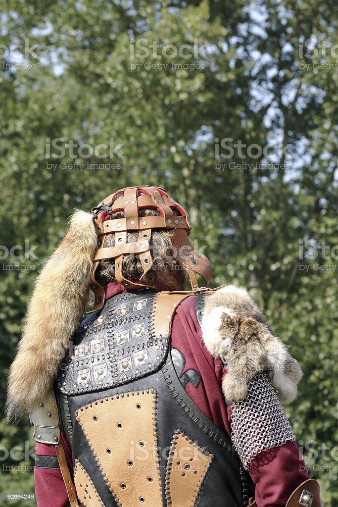 fox warrior royalty-free stock photo