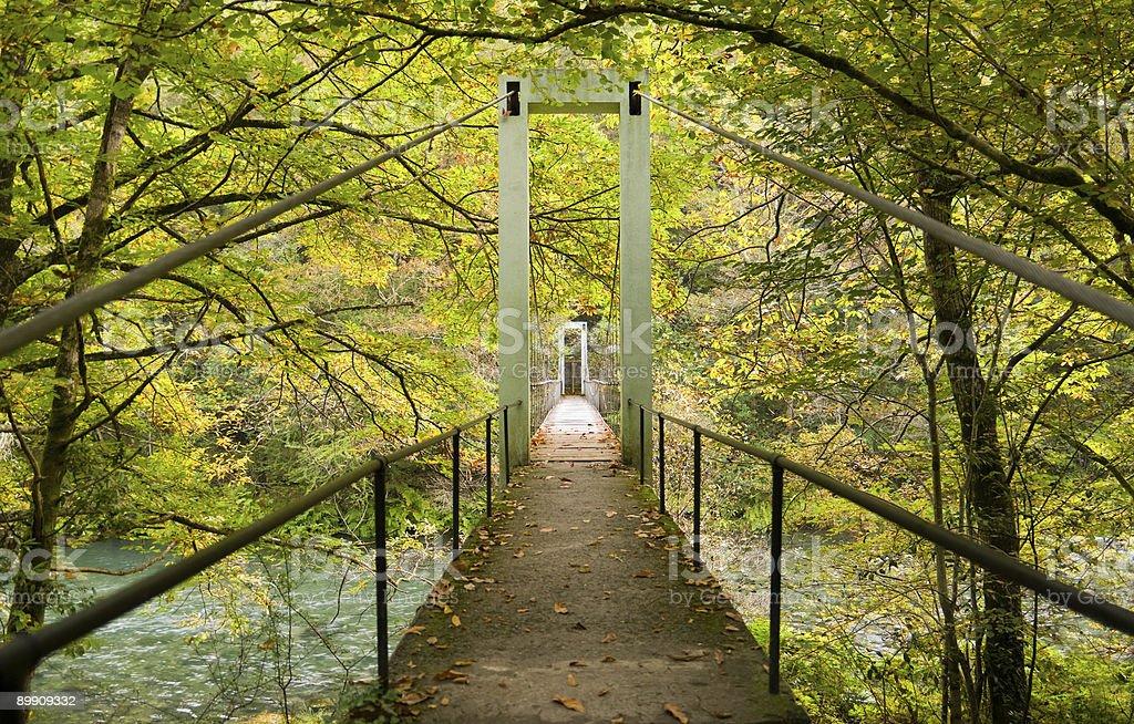 Fragas del río Eume-National Park foto de stock libre de derechos