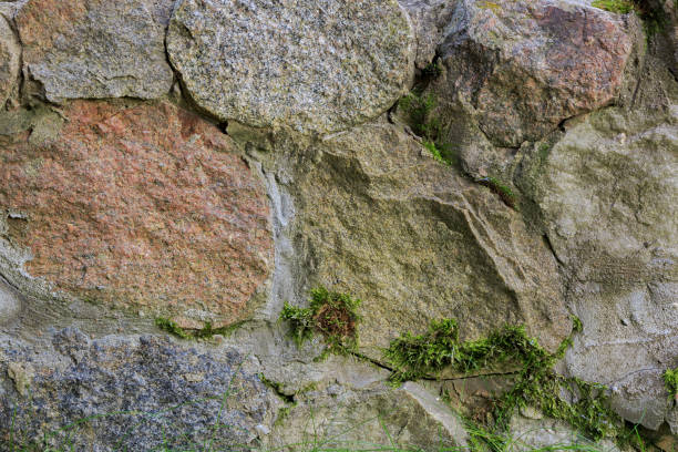 Fragment of a wall made of natural chipped stone covered with moss stock photo
