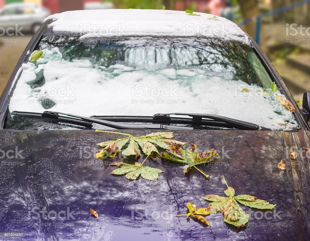 Fragment of car, covered with fallen leaves and snow Lizenzfreies stock-foto