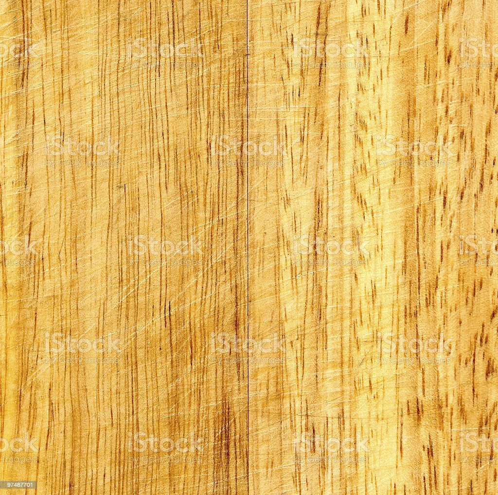 Fragment of oak timber royalty-free stock photo
