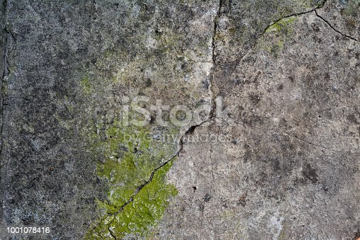fragment of old gray cement with cracks and green moss, close up
