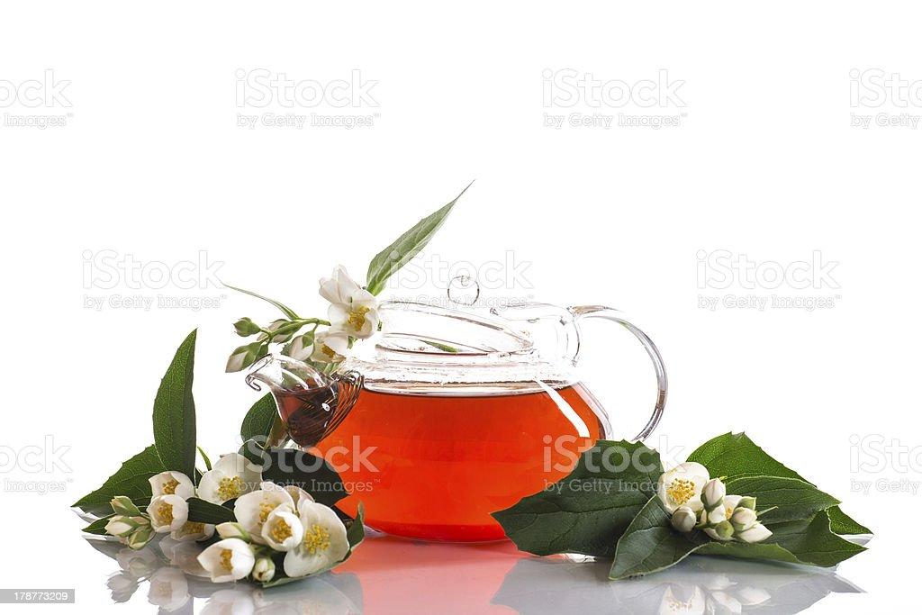 fragrant jasmine tea royalty-free stock photo