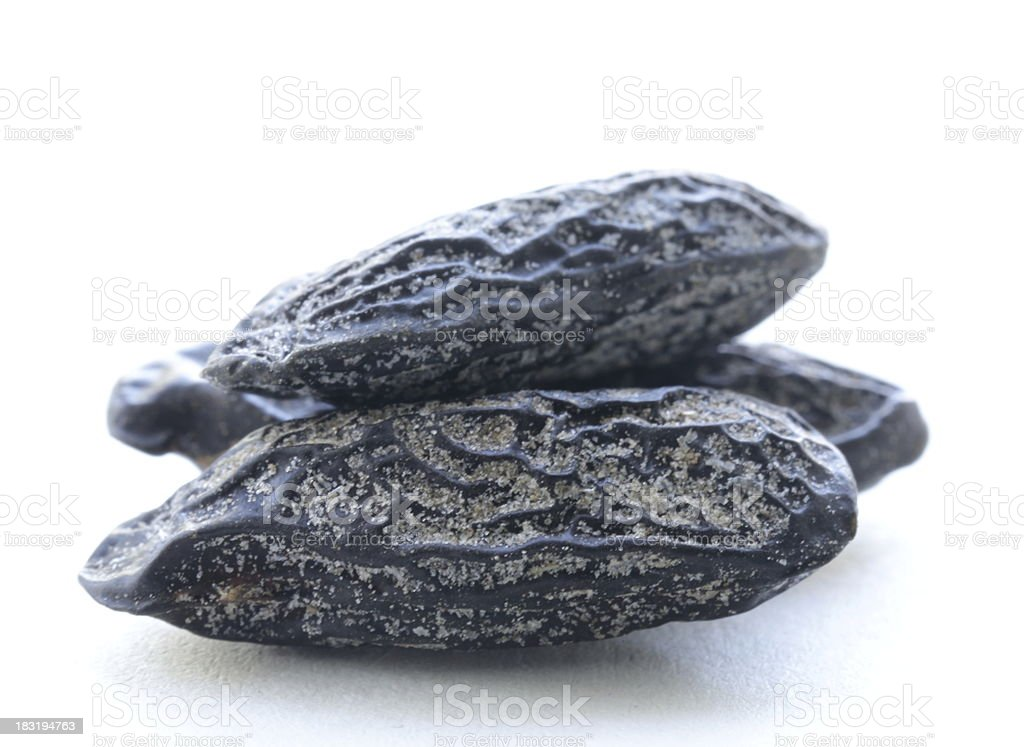 fragrant tonka bean, used for baking flavored royalty-free stock photo
