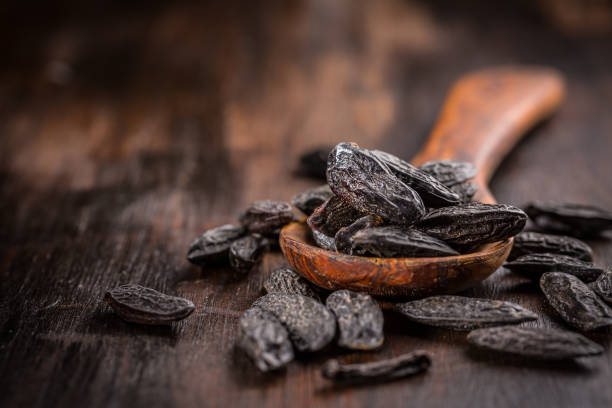 Fragrant tonka beans for baking and cooking on dark background stock photo