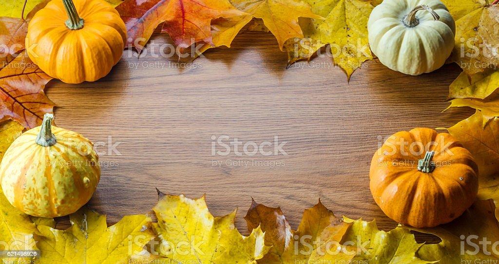 Cadre composé de feuilles d'automne colorés photo libre de droits