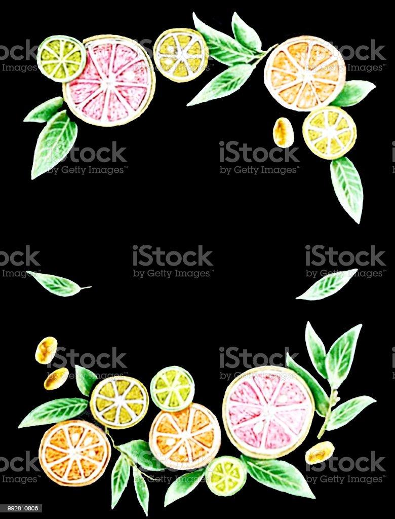 Frame drawing with orange, grapefruit, mandarin and leaves stock photo