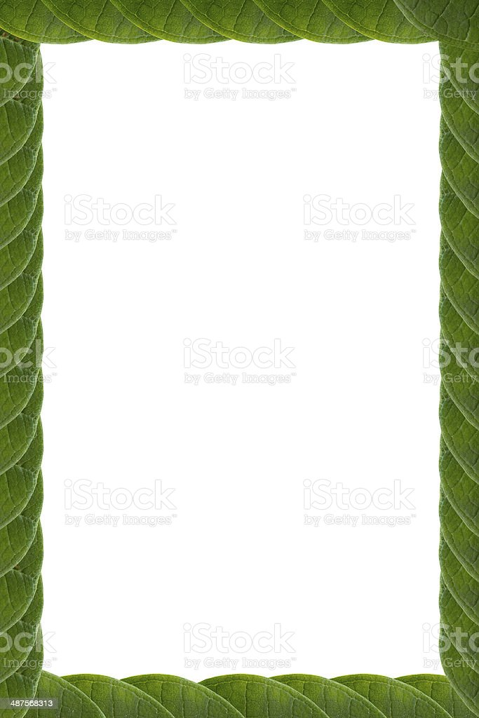 Frame form leaf royalty-free stock photo