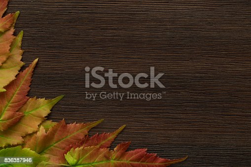istock Frame from colorful maple leaves on brown wooden background 836387946