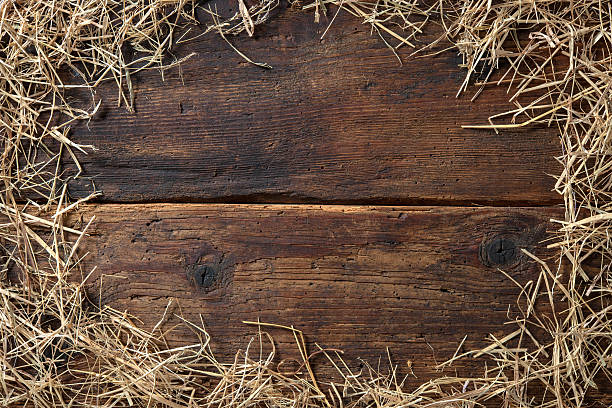 Frame from straw Frame from straw on vintage wooden board hay stock pictures, royalty-free photos & images