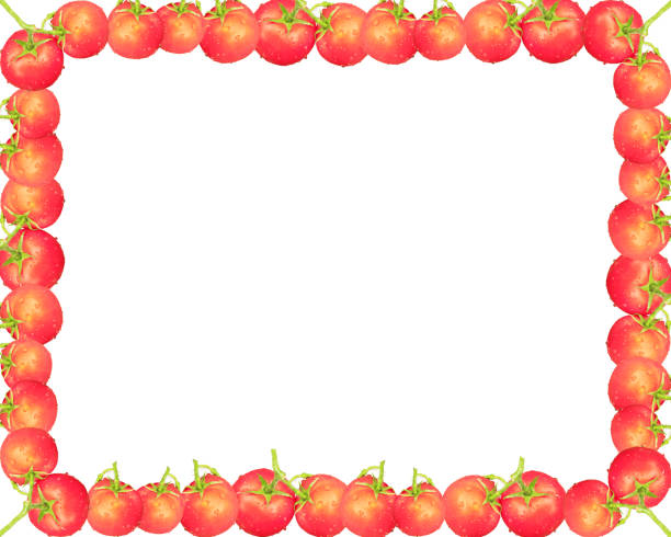 Quadro de tomate - foto de acervo