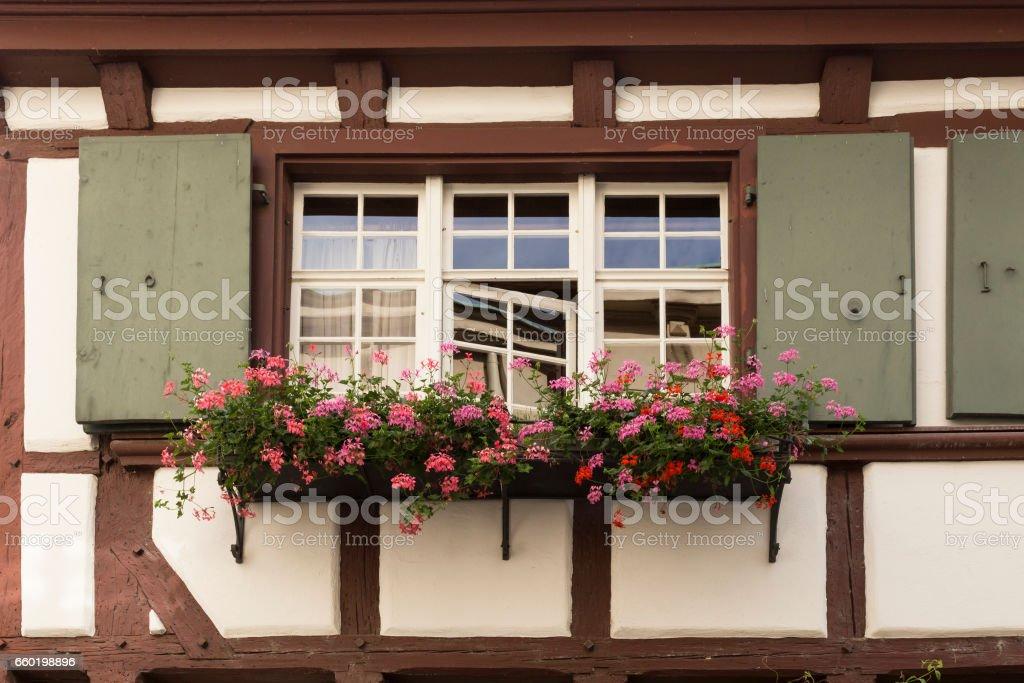Frame house window with geranium flowers stock photo