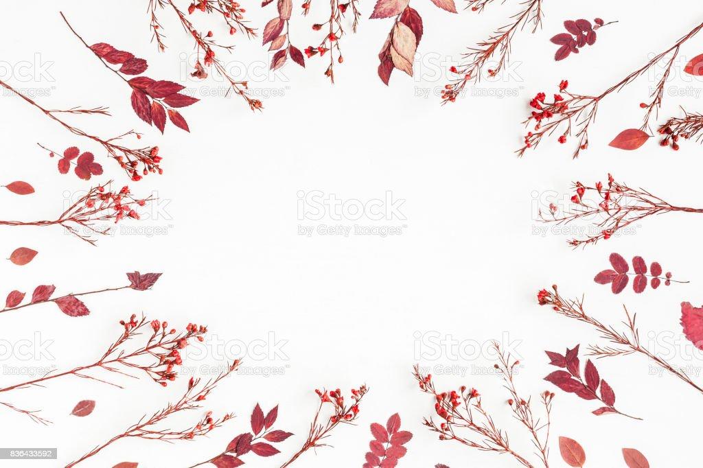 Structure en automne fleurs, feuilles. Vue plate Lapointe, top - Photo