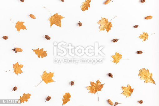 istock Frame made of autumn maple leaves. Flat lay, top view 841234478