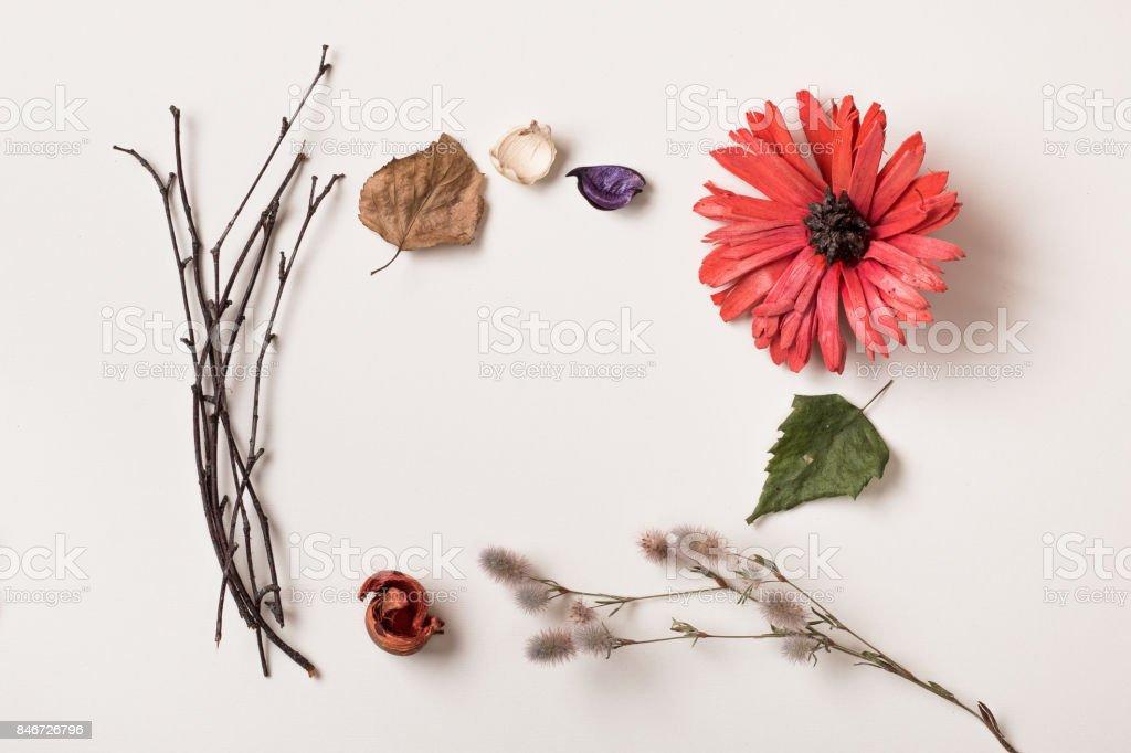 Cadre en automne plantes et fleurs rouges - Photo