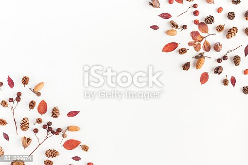 istock Frame made of autumn things. Flat lay, top view 831896674