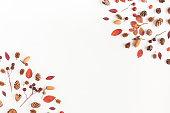 フレーム、秋のこと。フラット横たわっていた、トップ ビュー