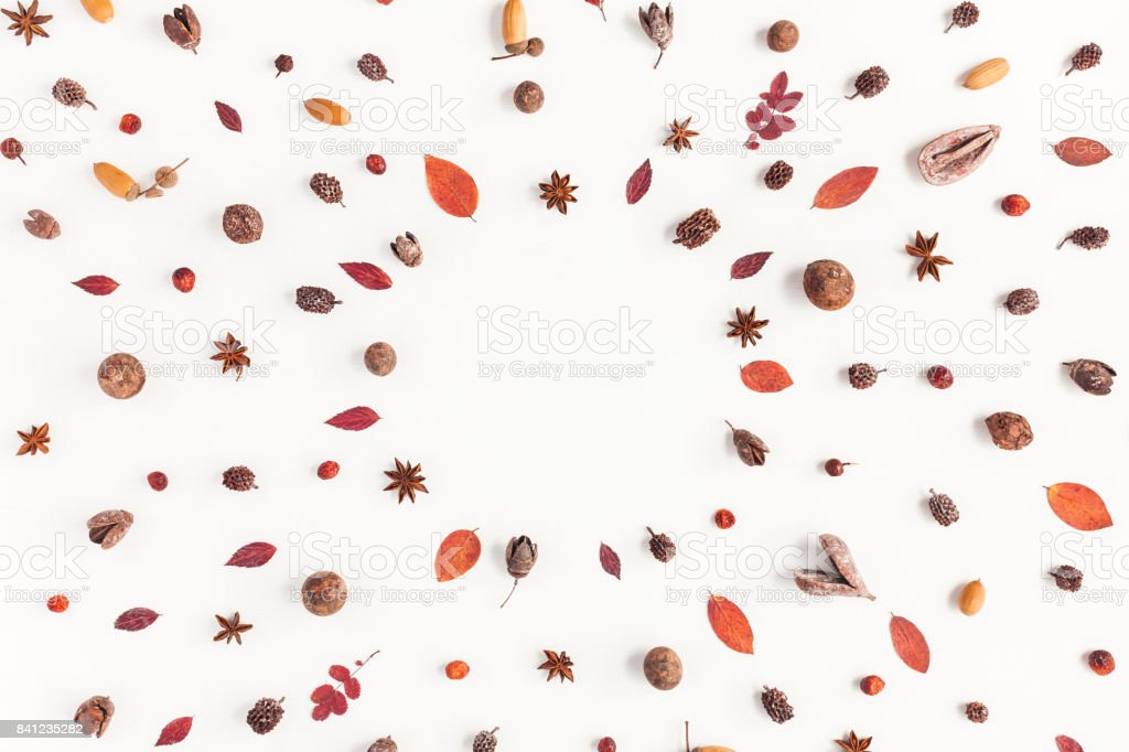 Frame made of autumn things. Flat lay, top view stock photo