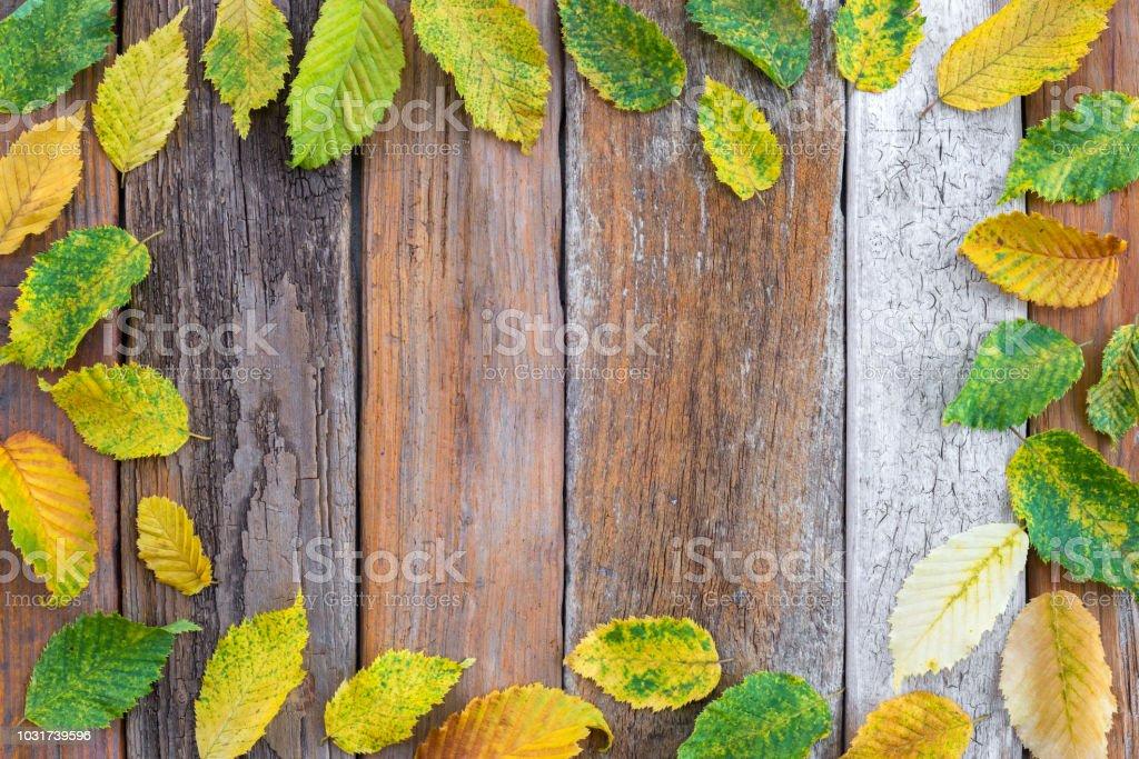 Moldura feita de outono brilhante folhas de fundo de madeira velho - foto de acervo