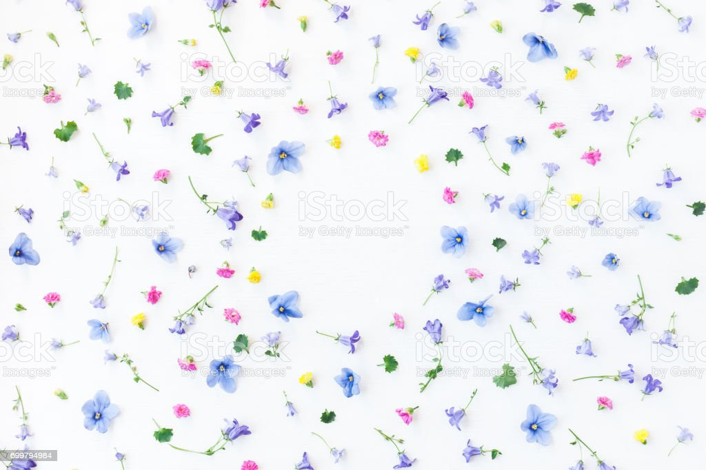 Frame made of different little flowers. Flat lay, top view stock photo