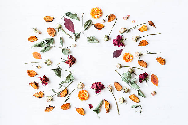 frame made of dried flowers and autumn leaves, flat lay - foto stock