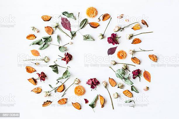 frame made of dried flowers and autumn leaves, top view, flat lay