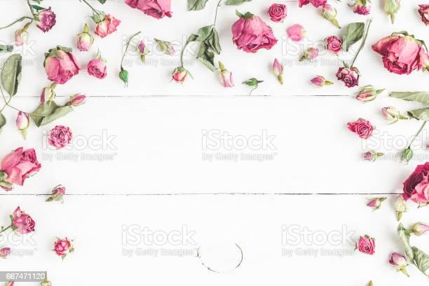 Frame made of dried rose flowers on white wooden background picture id667471120?b=1&k=6&m=667471120&s=612x612&h=mbqn vmothval2ed5hda5rjhsbeyjfdr1aygpyrw7li=