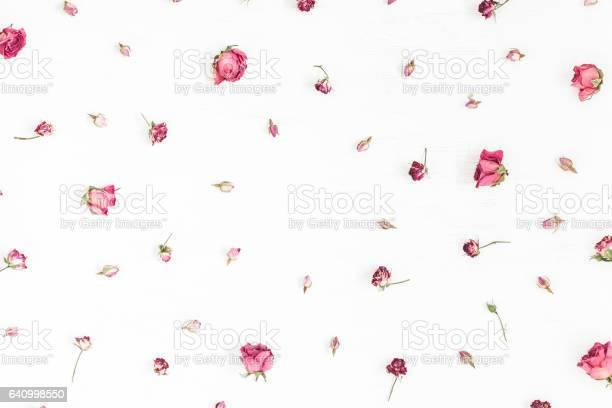 Frame made of dried rose flowers valentines day picture id640998550?b=1&k=6&m=640998550&s=612x612&h=4flisbmvfedwszxhwybragmnpiungl6te1iziv  41u=