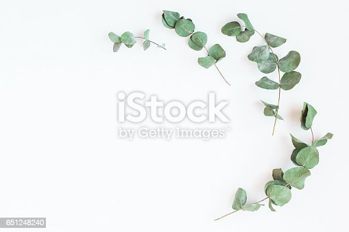 istock Frame made of eucalyptus branches. Flat lay, top view 651248240