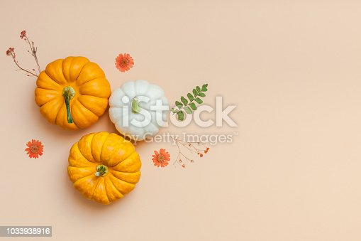 istock Frame made of pumpkins dried flowers and leaves 1033938916