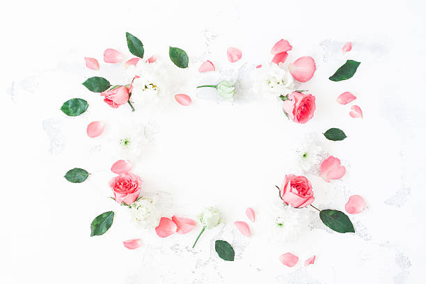 Frame made of rose flowers on white background flat lay picture id637350122?b=1&k=6&m=637350122&s=612x612&w=0&h=aphvpwrrfz pyu3y8w5futmub9mgef0zxb1qsvdnrc0=
