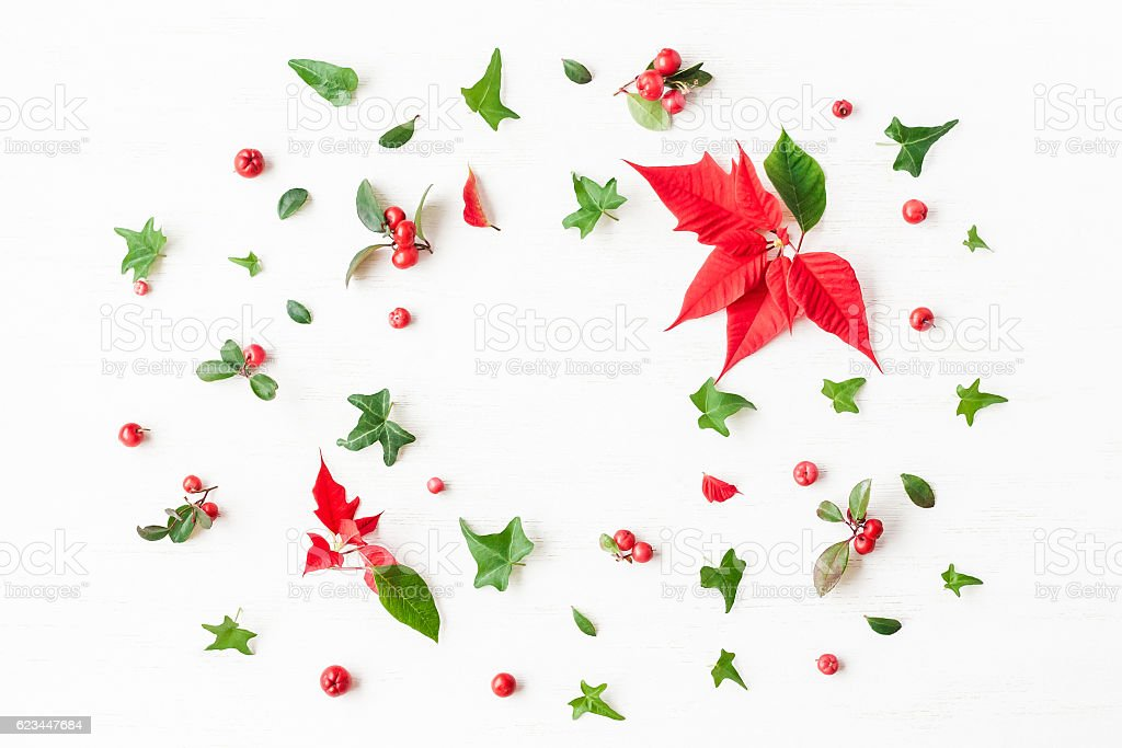 Frame made of traditional christmas plants. Flat lay, top view stock photo