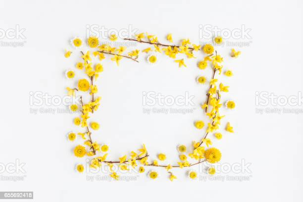 Frame made of various yellow flowers on white background picture id655692418?b=1&k=6&m=655692418&s=612x612&h=9ogpefdn4wmtzqkfohntty1jrv1duafpbphcz2hyxn4=
