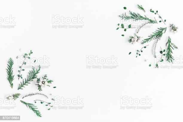 Frame made of winter plants flowers flat lay top view picture id870419864?b=1&k=6&m=870419864&s=612x612&h=cx dqjmw3arjuzzym10etfijwcv73z 45abelpwjqpo=