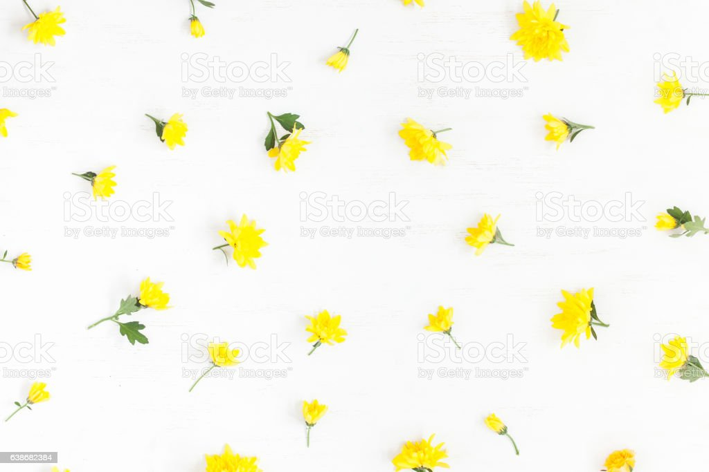 Frame made of yellow flowers on white background stock photo