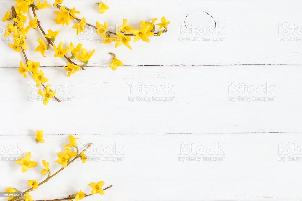 Frame Made Of Yellow Flowers On Wooden White Background ...