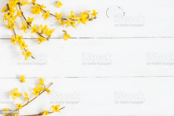 Frame made of yellow flowers on wooden white background picture id655693024?b=1&k=6&m=655693024&s=612x612&h=crpqexmv1muwryv5eetbbgph4edc12wipqfnqv xywa=