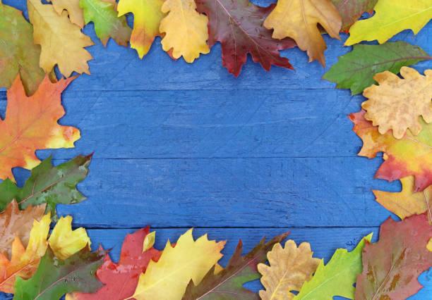 cadre des feuilles de l'automne sur le bois - Photo