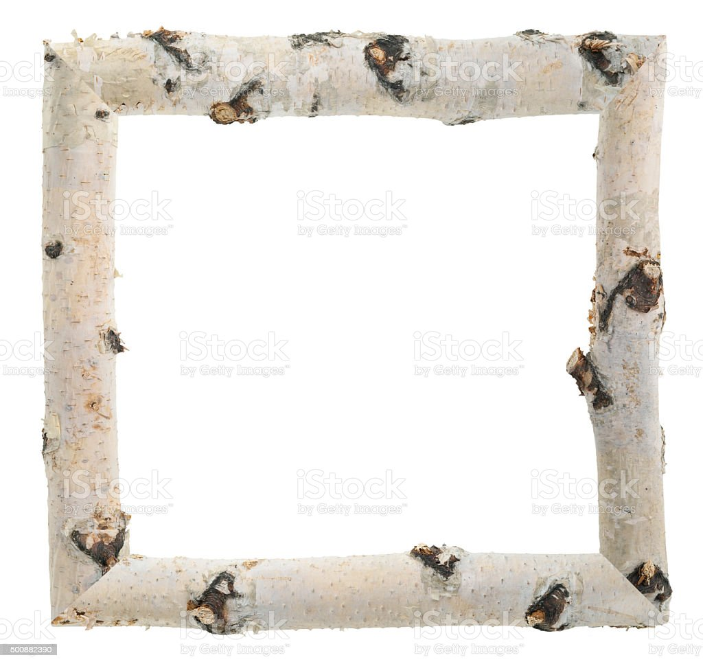 Frame Of Birch Logs Stock Photo & More Pictures of Birch Tree | iStock