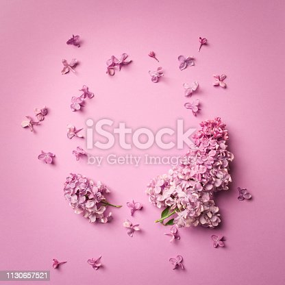 frame of branches and flowers of lilac on a pink background.blank for cards for spring, Easter, mother's day, women's day, Valentine's day. top view, copy space