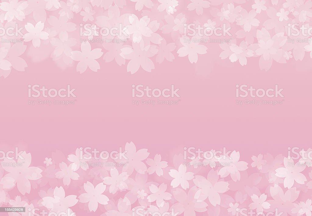 frame of cherry blossom petals stock photo