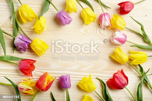 Frame Of Colorful Tulips On Natural Wooden Background With Space For Text Stock Photo & More Pictures of Anniversary
