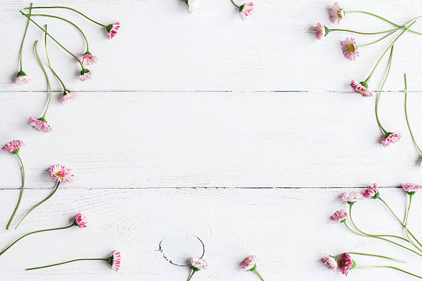 Frame of daisy flowers top view flat lay picture id580130122?b=1&k=6&m=580130122&s=612x612&w=0&h=pvax1mqb whaapfcz4ifnhdvucbwhjwrbm0 sb1phb0=