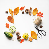 Autumn composition on white background: leaves, pumpkins, pine cones, and spices