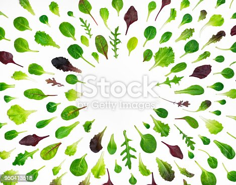 Spring background with salad leaves