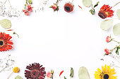 istock Frame of dry flowers on white background. 1202123777