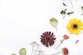 istock Frame of dry flowers on white background. 1202773806