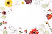 istock Frame of dry flowers on white background. 1204455411