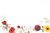 istock Frame of dry flowers on white background. 1205815256